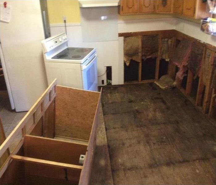 Mold Remediation What to do with mold before help arrives?