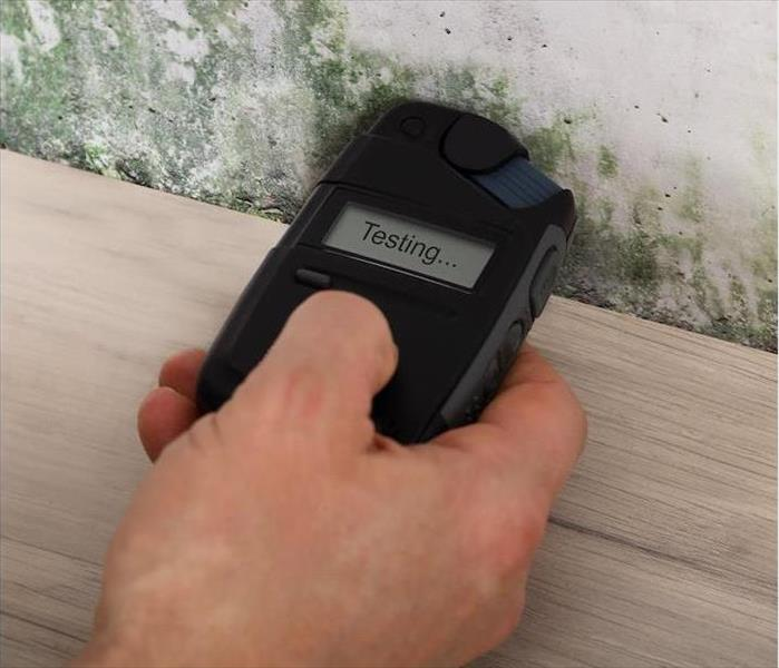 Mold Remediation Are Home Mold Testing Kits Accurate?